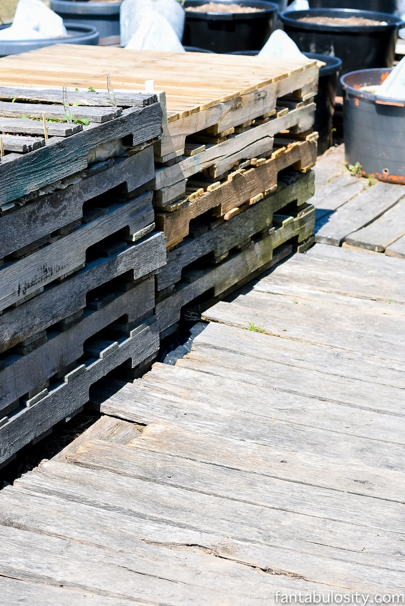 Raised garden beds out of pallets. Love this ideas. Greenhouse gardening ideas using some recycled items and other little tricks