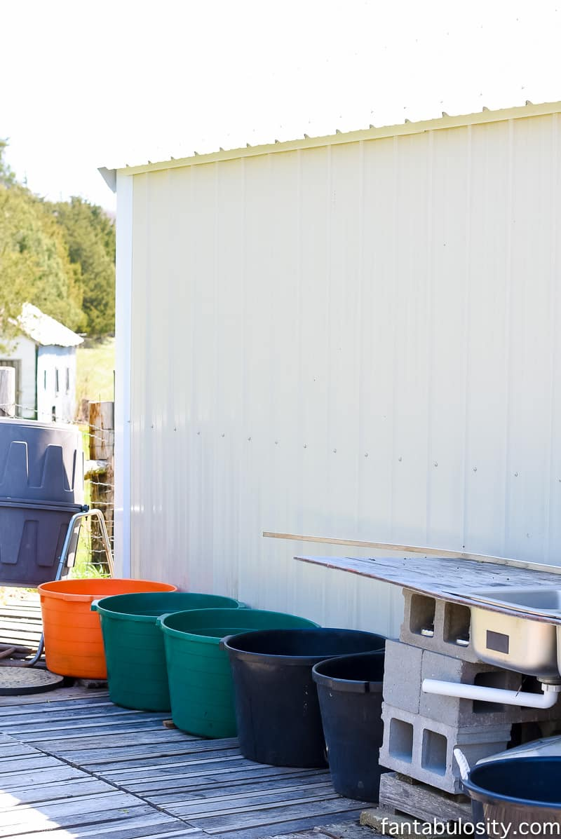 Catch rain water in buckets, off the roof of the green house to recycle the water. How awesome!