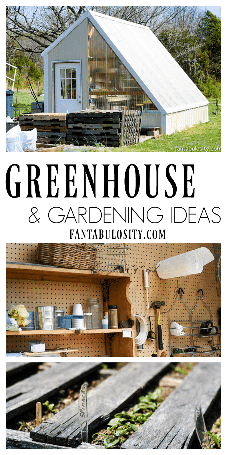 Greenhouse Gardening Ideas