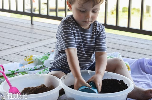 Toddler Activity-Growing Wheatgrass-11