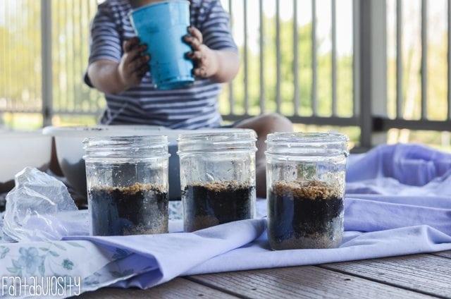 Toddler Activity-Growing Wheatgrass-13