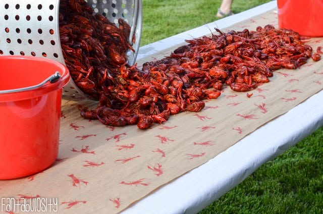 crawfish boil party