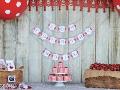 Crawfish Boil Birthday Party Ideas
