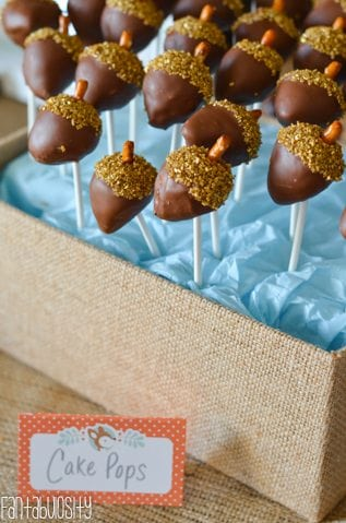 Woodland Friends First Birthday Party Ideas Acorn Cake Pops Fantabulosity