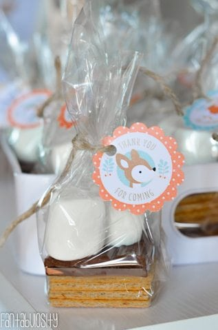Woodland Friends First Birthday Party Smores Favors https://fantabulosity.com