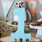 Woodland Friends First Birthday Party Ideas #1 http://fantabulosity.com
