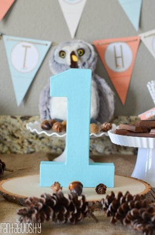 Woodland Friends First Birthday Party Ideas 1 Fantabulosity