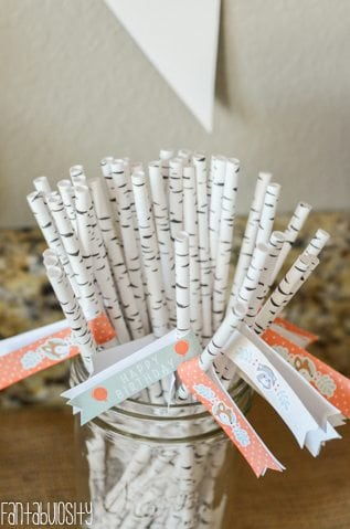 Woodland Friends First Birthday Party Birch Straws and Straw Flags http://fantabulosity.com