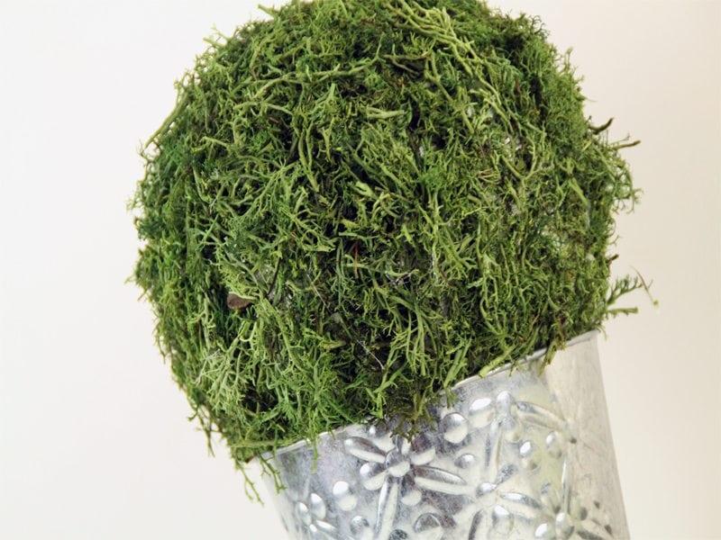 DIY Moss Covered Arrangement Tutorial! https://fantabulosity.com