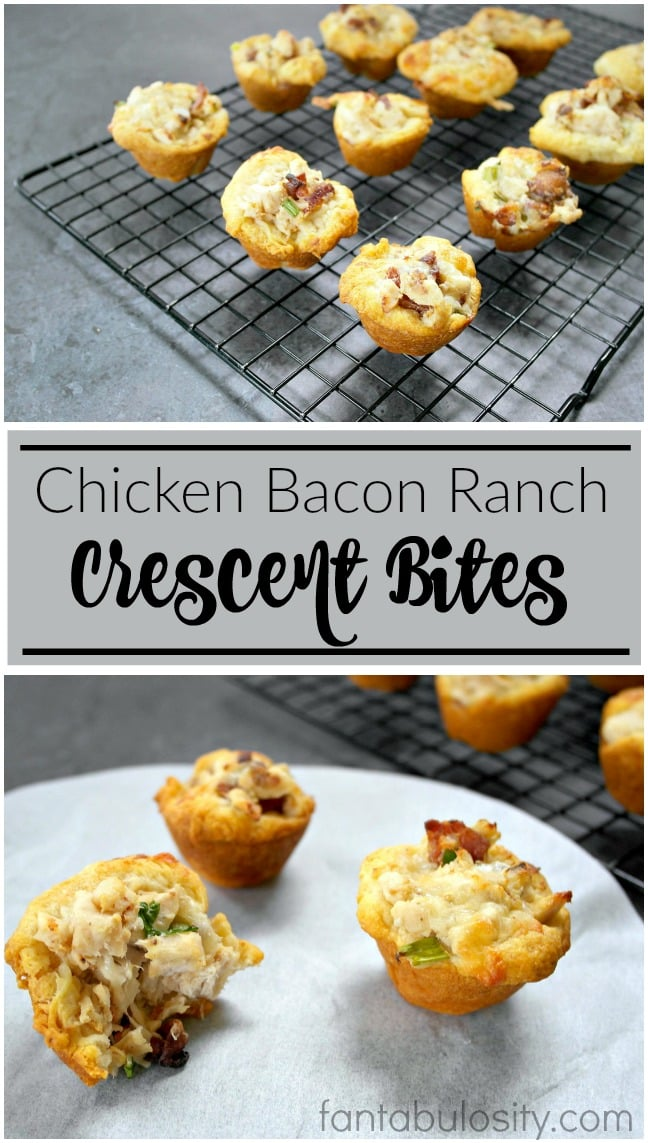 Ahhh! Yum!! These look AH-MAZING and EASY! Chicken Bacon Ranch Crescent Bites Easy appetizer idea