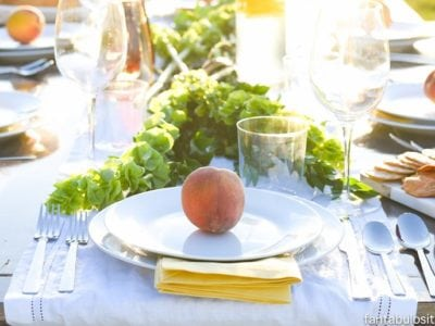 Peach Place Setting! Love this! So simple and classy. Pop Up Backyard Dinner Party: Entertaining Ideas, classy, easy simple, quick, fun, outside
