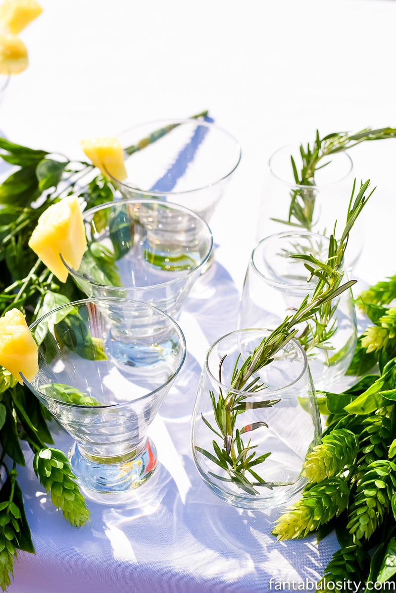 Drink Garnishes for Summer Outdoor Party