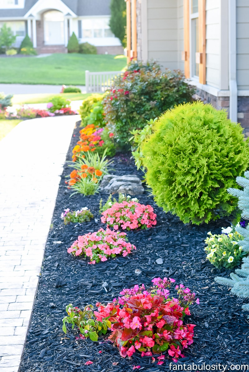 Front Porch Landscaping Fantabulosity