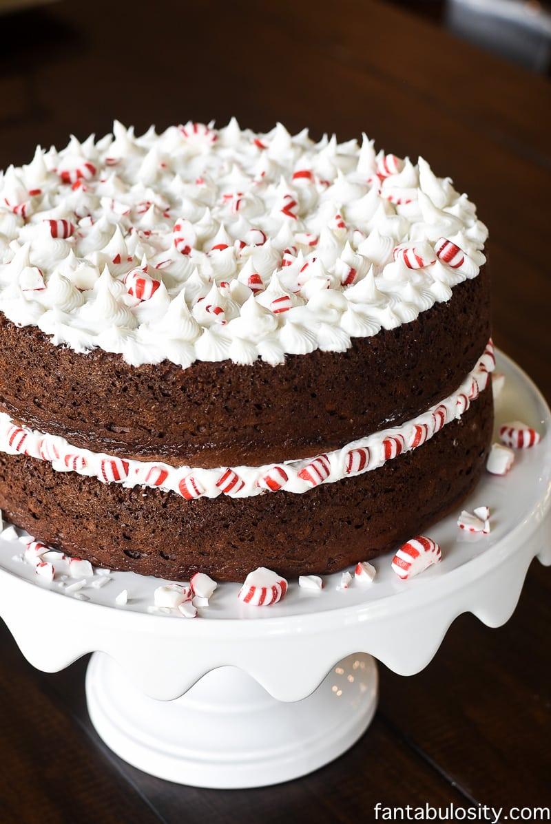 Peppermint Mocha Crunch Cake Recipe, fantabulosity.com