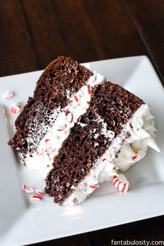 Peppermint Mocha Crunch Cake Recipe, fantabulosity.com