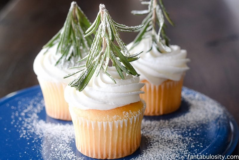 Oh my gosh, how easy and cute! Tree Forest Winter Cupcakes