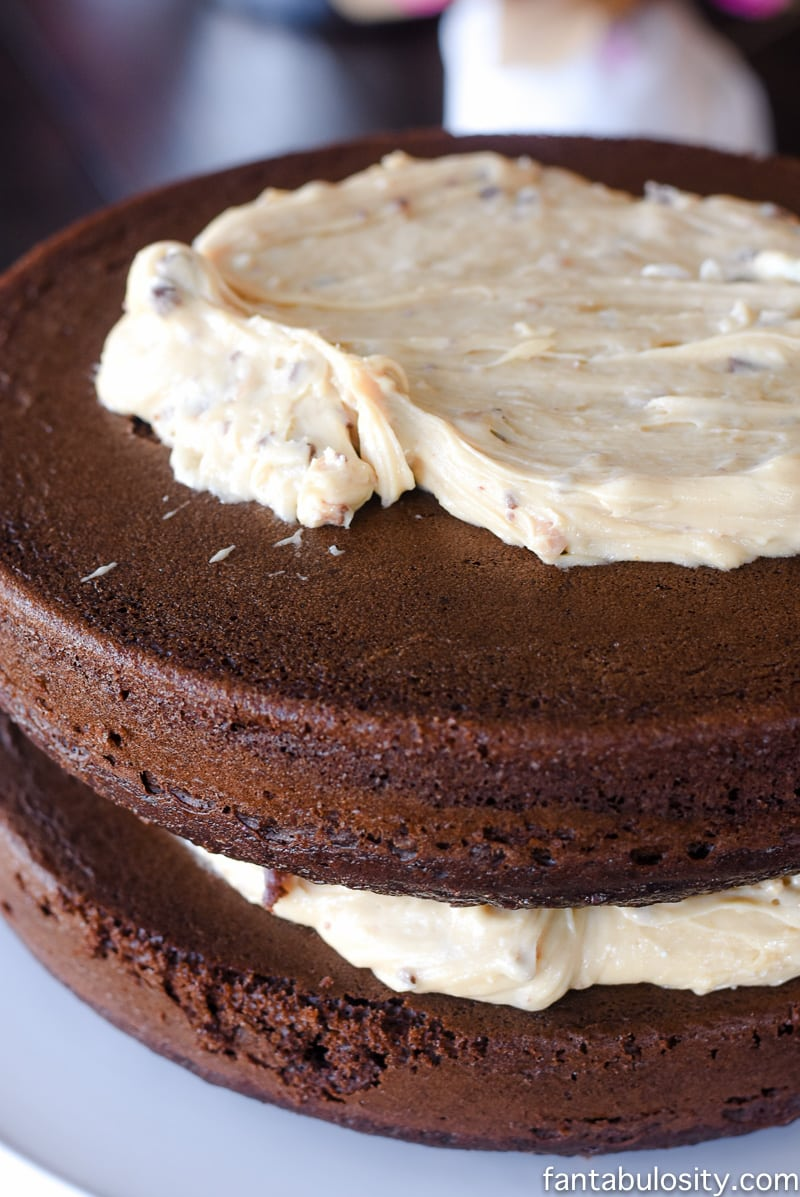 Chocolate Peanut Butter Salted Caramel Toffee Cake