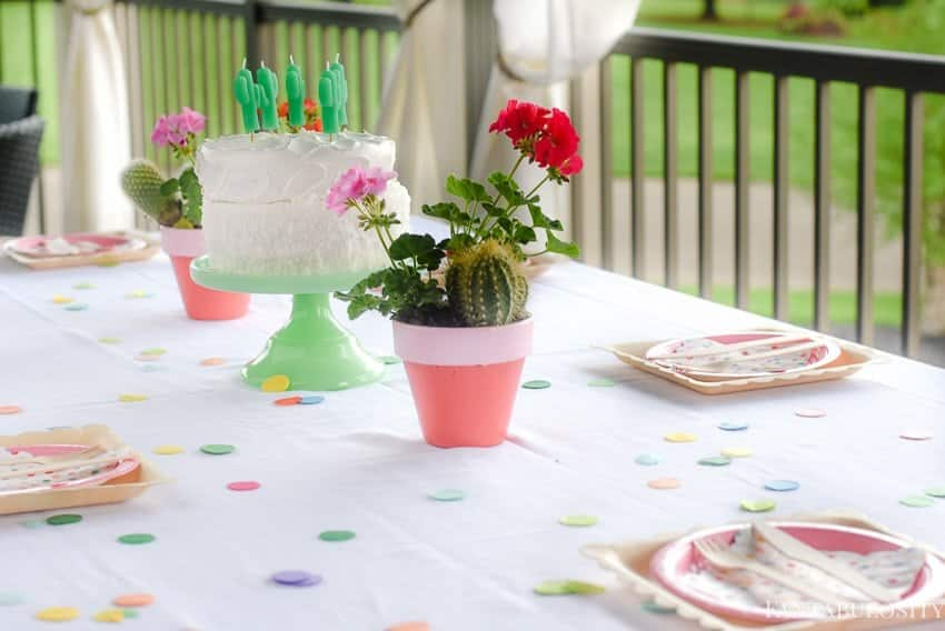 Fiesta Theme Party: A confetti and pastel fiesta party!