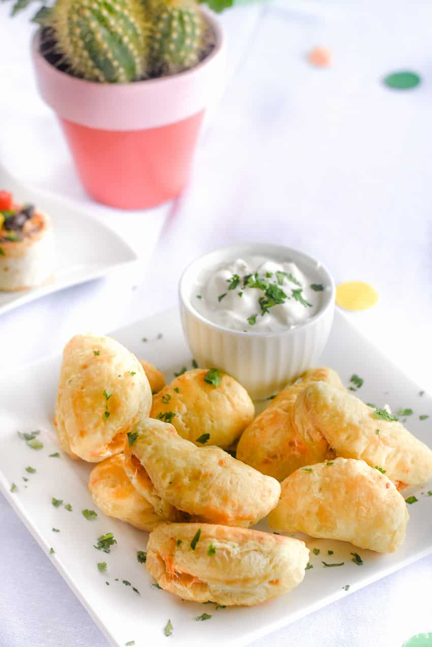 Chicken empanada appetizer for a fiesta party!