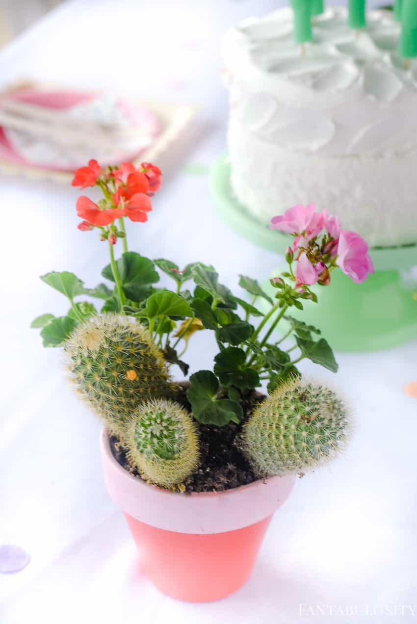 DIY pink and coral flower pots with cactus! SO cute! Fiesta Theme Party: A confetti and pastel fiesta party!