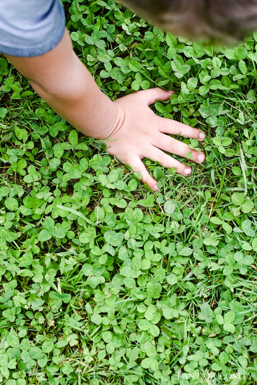 Searching for 4-leaf clover