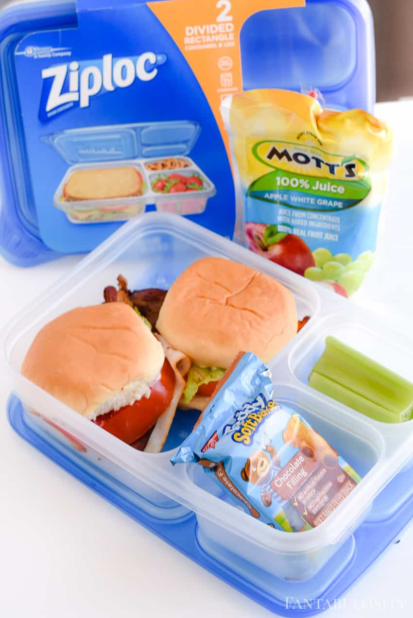 School lunch ideas using apple juice and bento boxes