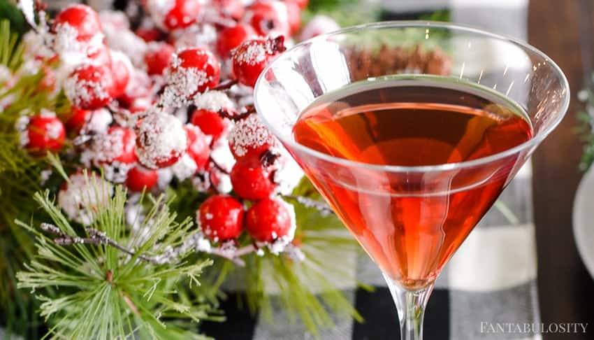 Yum! Only 2 ingredients!? This drink recipe is so easy and classy! Perfect for a red themed party of for the holidays! 2 ingredient cran apple martini