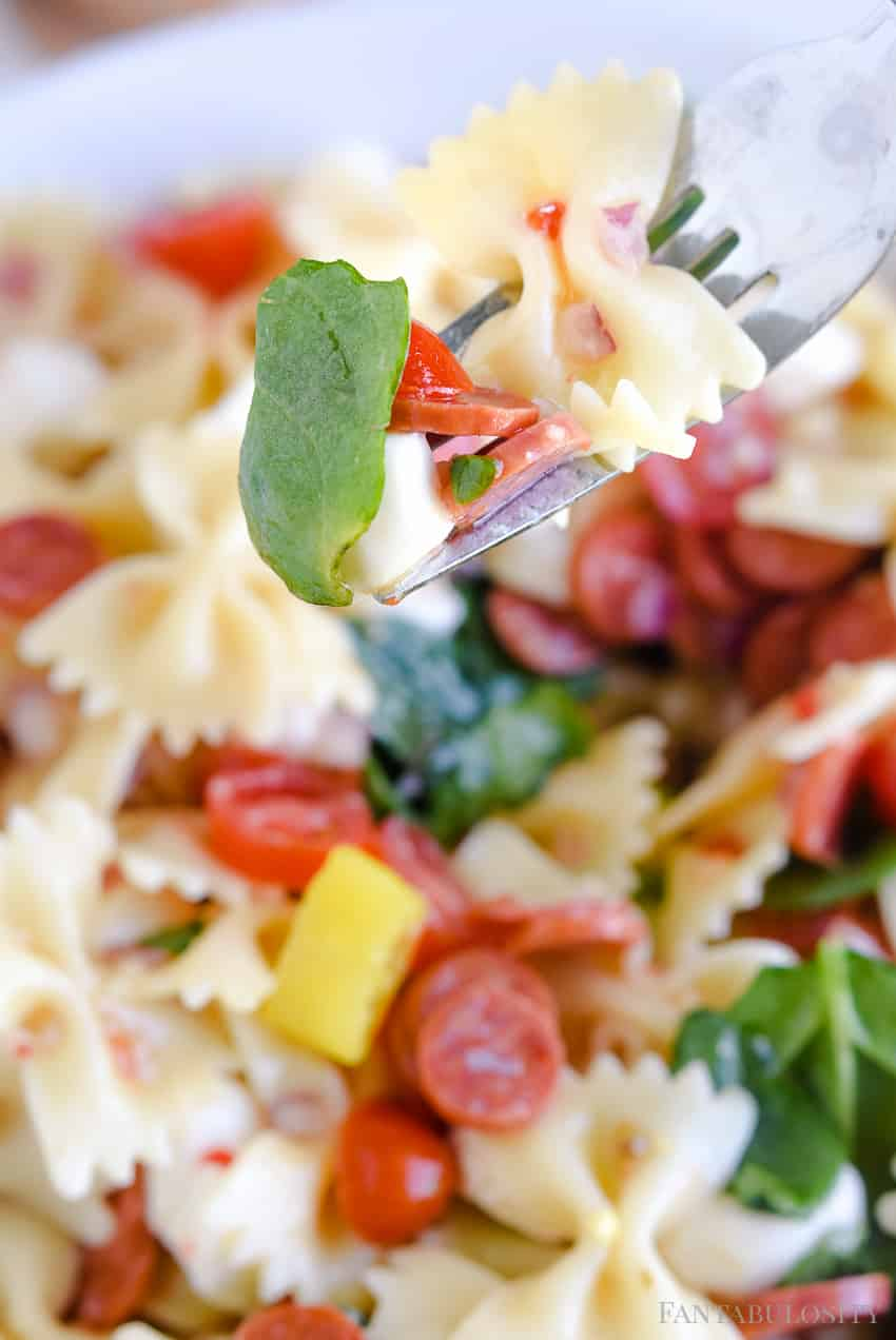 Italian Pasta Salad Recipe - This was so easy and a side dish recipe that is addicting!