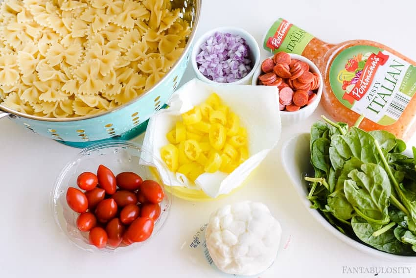 Ingredients for Pasta Salad Recipes! This cold Italian recipe is the best!