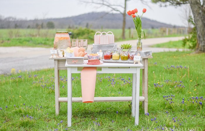 Hot Dog Bar Ideas and Toppings Suggestions for a party