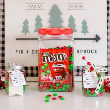 M&M Gift Idea for Christmas and Neighbors