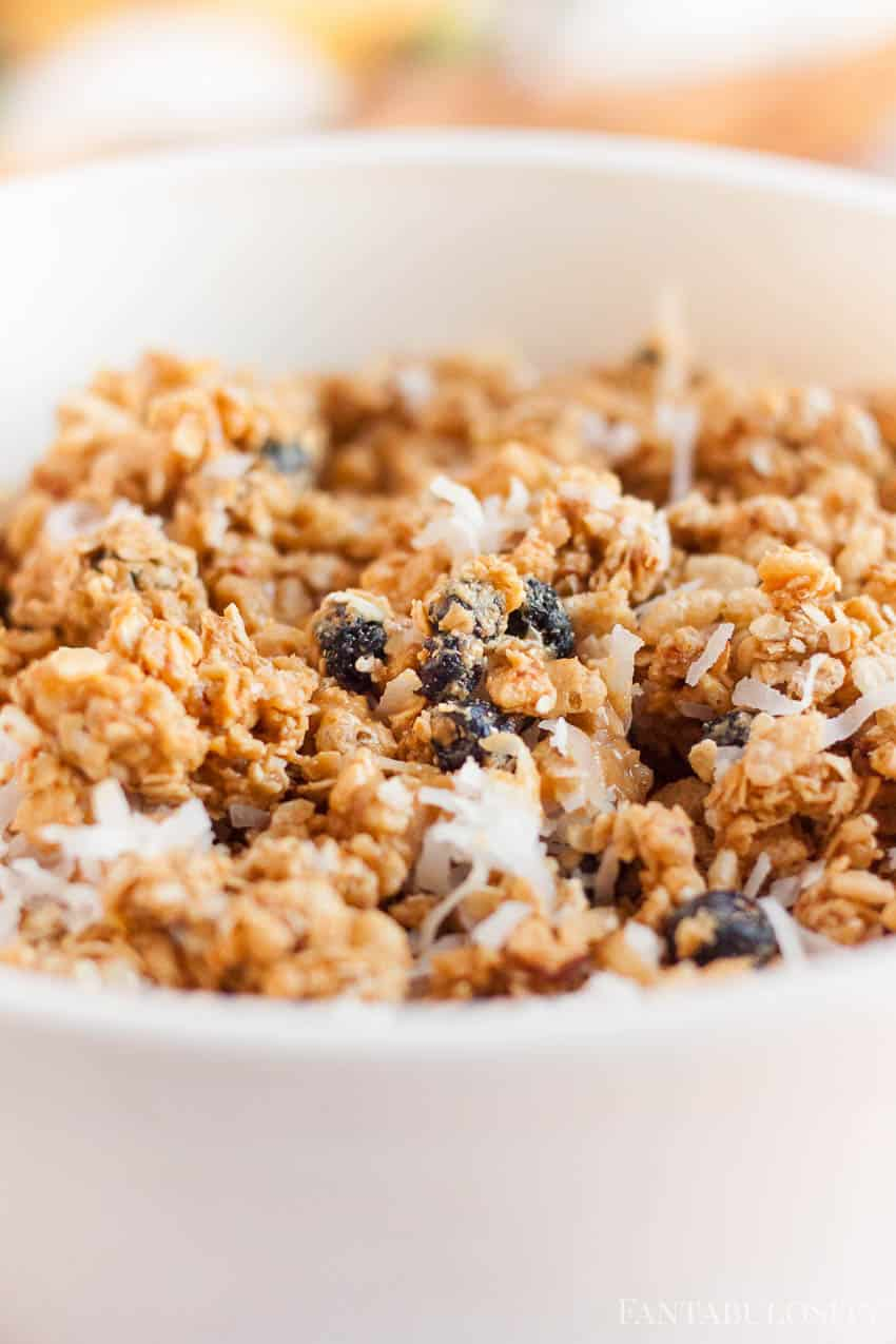Blueberry Granola Bars Recipe with peanut butter and stevia