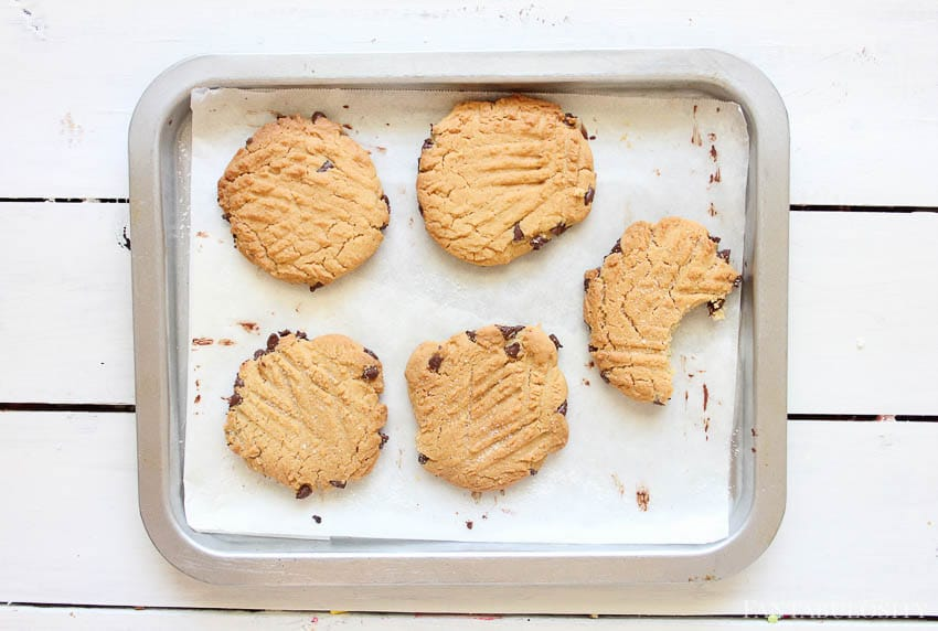 Cookies on baking sheet - chocolate chip peanut butter cookies