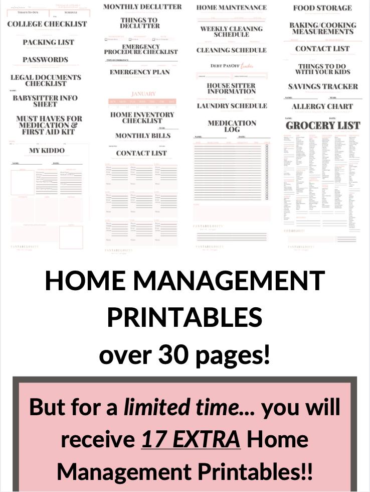 Fantabulosity Home Management Binder
